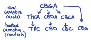 medical cannabis, cananbinoid acid, cannabinoid-acid