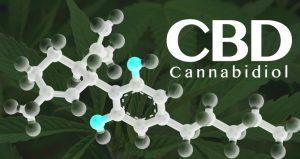 CBD, medical cannabis, hemp